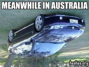 345-Meanwhile_in_australia